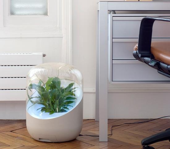 好きな観葉植物でオリジナル清浄機に。植物のハイブリッド空気清浄機