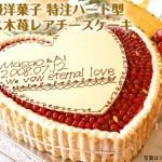 誕生日・デコレーションケーキプレゼント